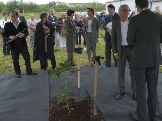 Weira, Germany Planting a seedling of the Anne Frank Tree